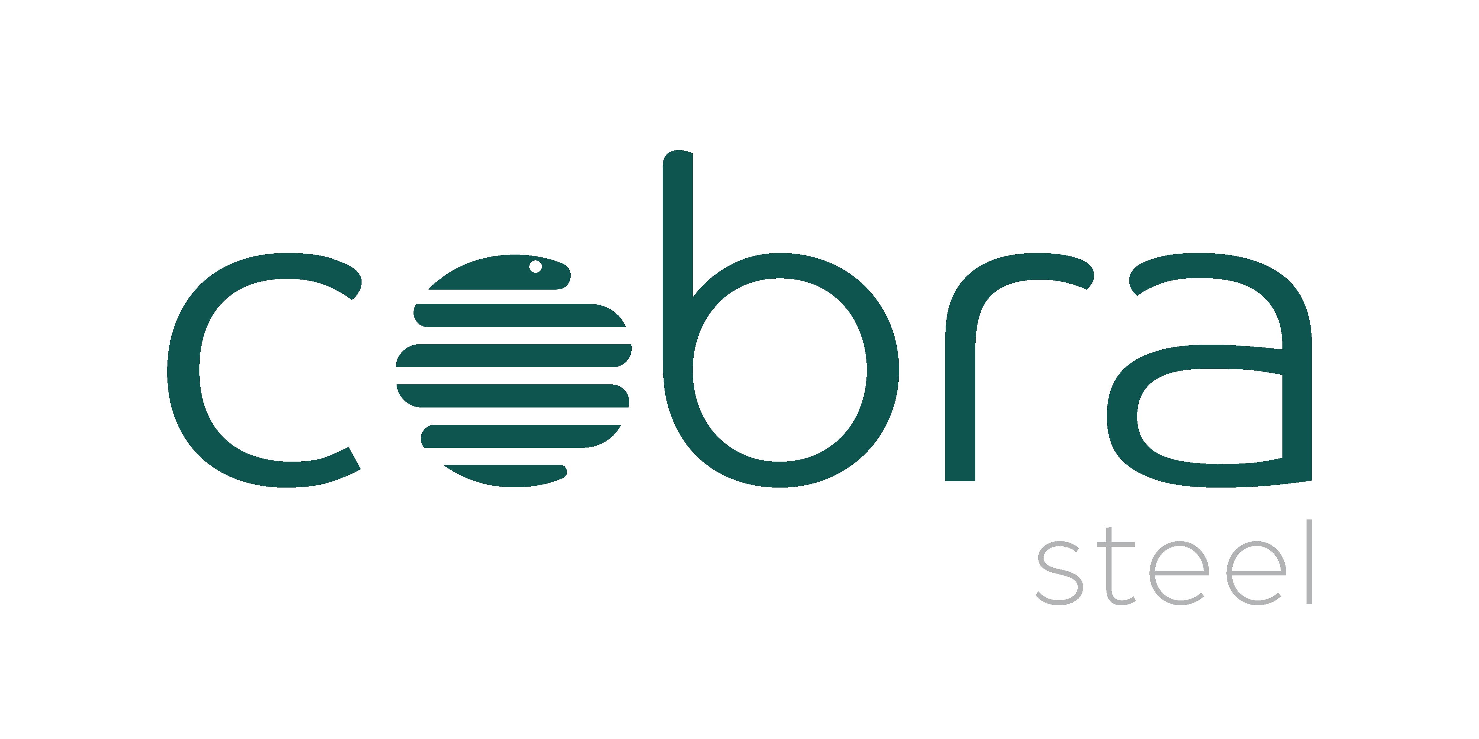 Logo Cobra steel